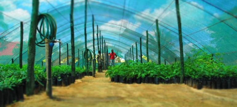 """""""I piccoli contadini sfameranno la terra"""": appuntamento a Cumiana il 12 e 13 settembre"""