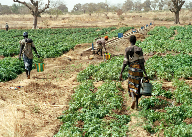 ProgettoMondo Mlal – Cibo e salute, Burkina Faso