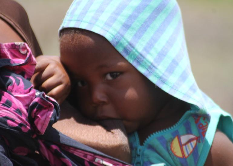 MMI – Transformações para alimentar o planeta, Mozambico