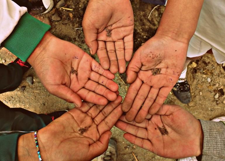 Aspem – Manos a la Tierra! Orti scolastici pedagogici per la sicurezza alimentare