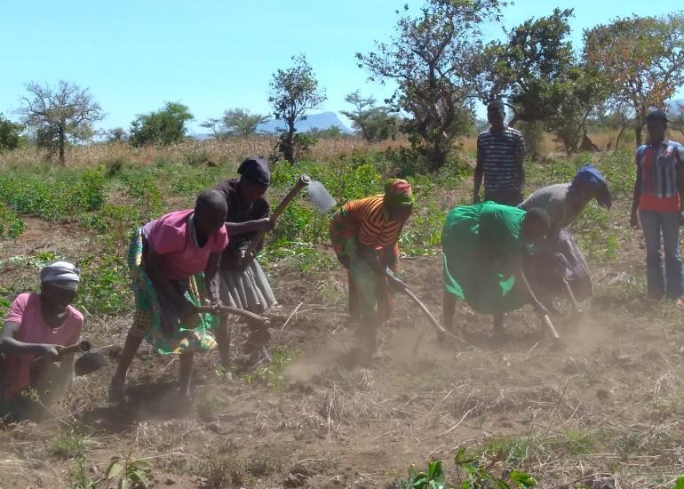 """Cooperazione e Sviluppo – """"Diritto al cibo in Karamoja"""""""