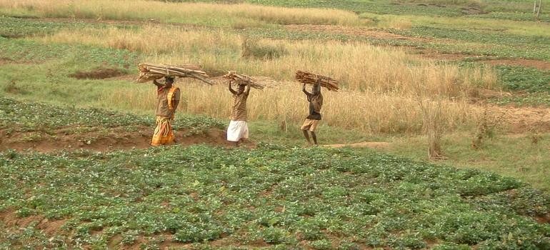 """VISPE – """"Molitura di farine e pilatura di riso per sostenere il lavoro delle donne nella parrocchia di Gihogazi"""""""