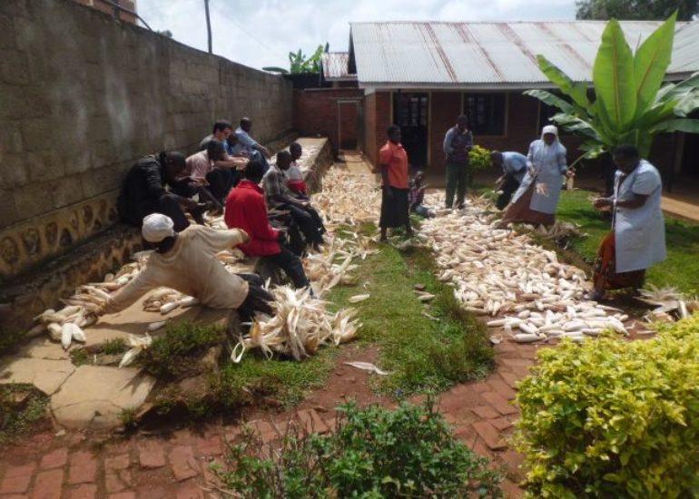 "MOCI – ""Agricoltura familiare a Cyangugu"""