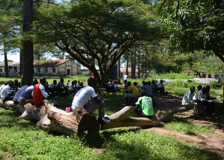"""Cooperazione & Sviluppo – """"Agribusiness per giovani agricoltori nel nord Uganda"""""""