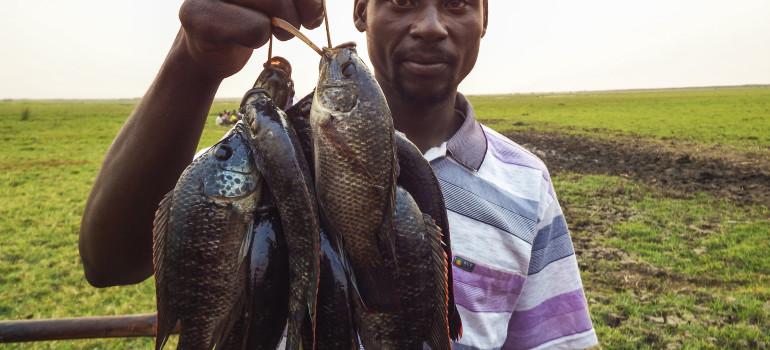 """CELIM MILANO – """"Sostenere lo sviluppo in Zambezia – piscicoltura e apicoltura in Mozambico"""""""
