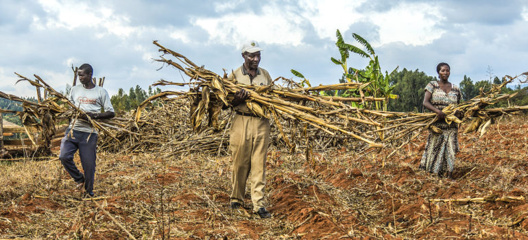 La fame nel mondo aumenta: pubblicato il nuovo Rapporto delle Nazioni Unite