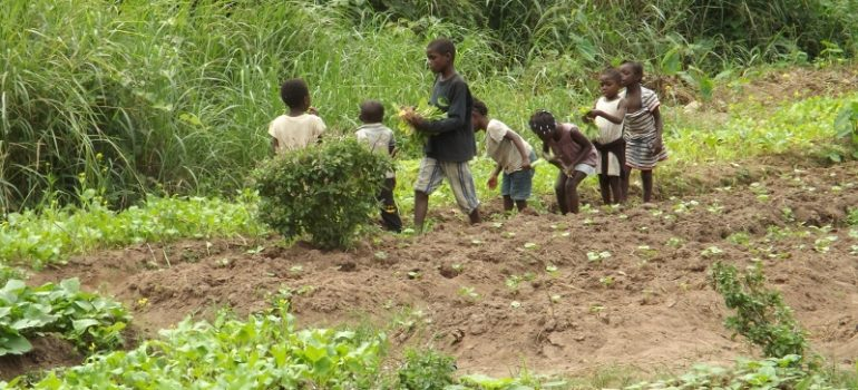 """Amici dei bambini e delle mamme di MAKOUA -""""Mama Mabele (3)"""""""